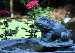 garden-frog-solar-water-fountain.jpg