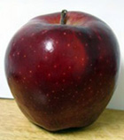 red-delicious-apple.jpg