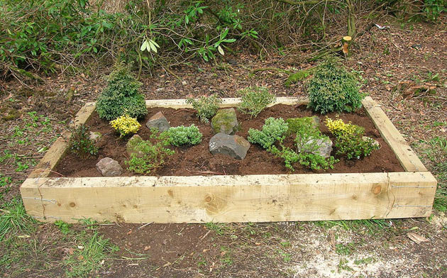 raised bed on grassy soil