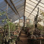 Ultimate climate control with a greenhouse