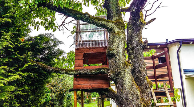 small treehouse