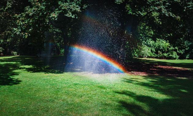 garden sprinkler rainbow