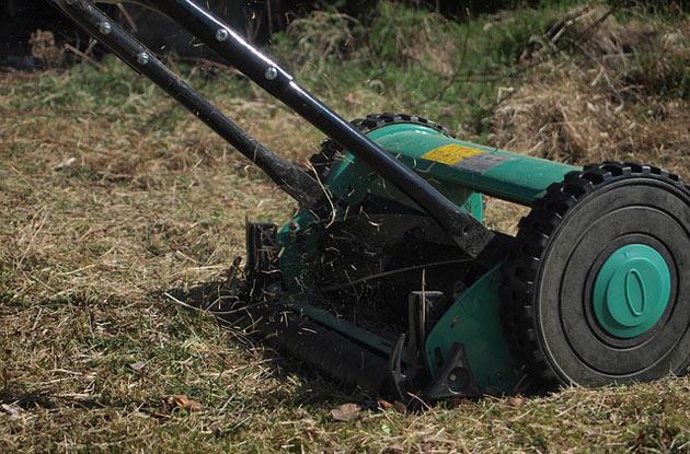 reel lawn mower in action