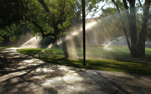 lawn sprinklers in action