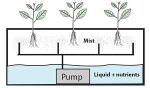 aeroponics diagram