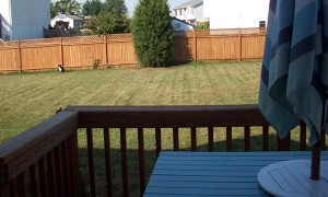 Some backyard landscaping ideas