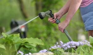 Garden watering basics