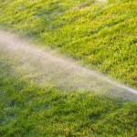 Advantages of a Lawn Sprinkler System