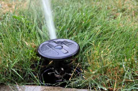 Different Types of Sprinkler Head