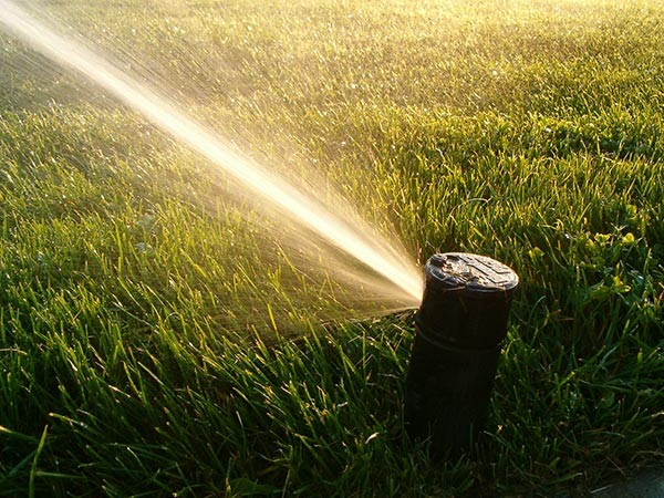 Setting up a lawn sprinkler timer
