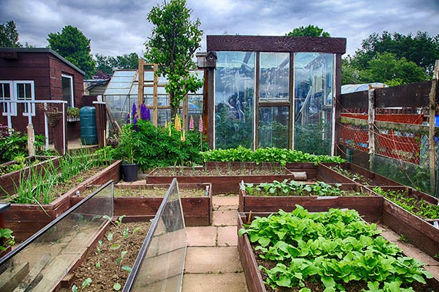 Maintaining your greenhouse