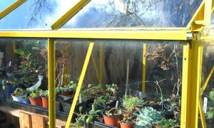 Greenhouse Planning Tips
