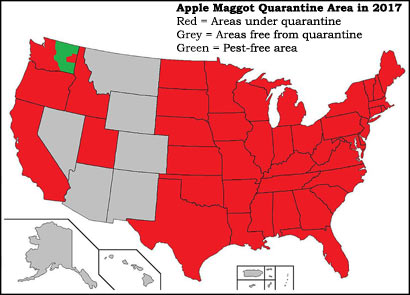 apple maggot quarantine area map