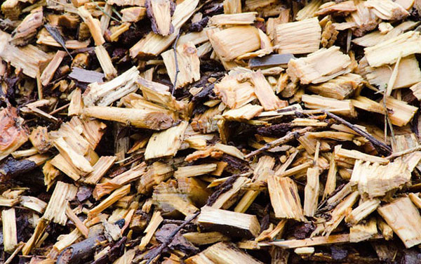 mulch wood chips