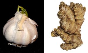 Best Way to Grow Garlic and Ginger