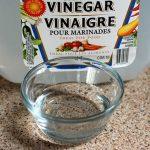 Amazing Uses for Vinegar in Your Garden
