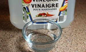 Amazing Uses for Vinegar in Your Garden
