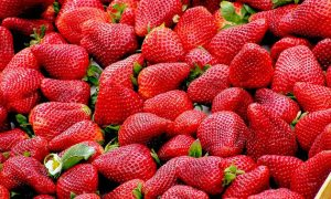 How to Grow Strawberries in Your Home Garden