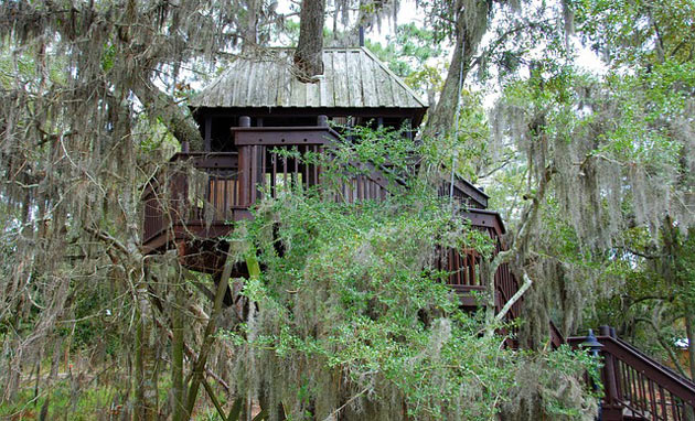 treehouse for adults too